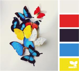 ButterflyColor515