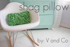 shag pillow